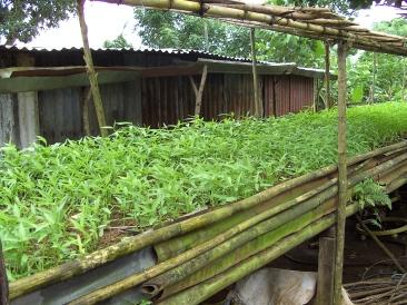 Landbouwproject